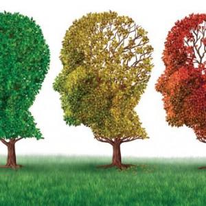 Jak se dá Alzheimerova choroba otestovat?