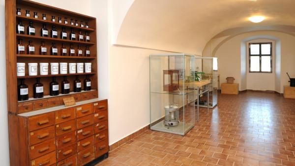 V expozici věnované historii lékáren jsou k zhlédnutí interiéry lékáren z různých období. První polovinu 19. století reprezentuje mobiliář lékárny U Zlatého lva z pražské Nerudovy ulice.